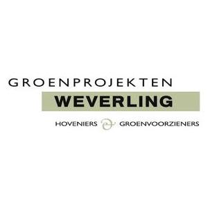Weverling